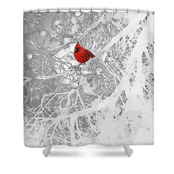 Cardinal In Winter Shower Curtain