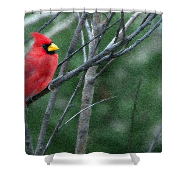 Cardinal West Shower Curtain