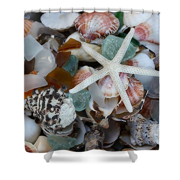 Caribbean Shells Shower Curtain