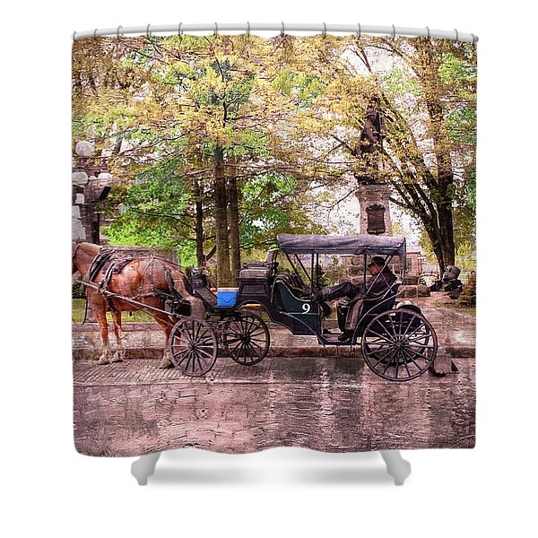 Carriage Rides Series 03 Shower Curtain
