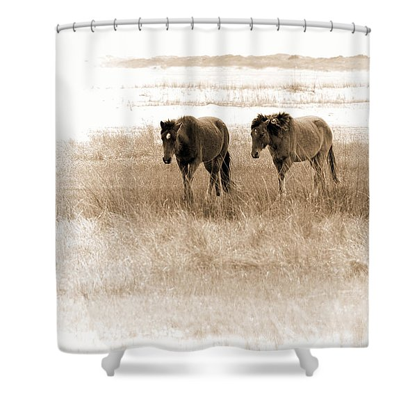 Carrot Island Ponies Shower Curtain