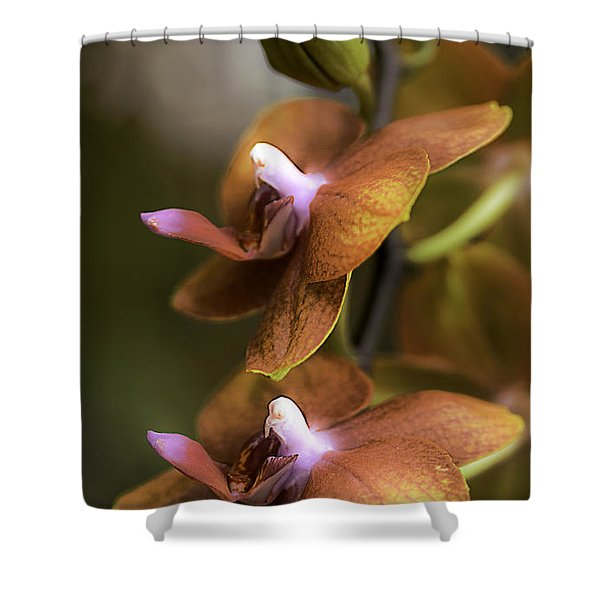 Cascading Exotic Orchids Shower Curtain