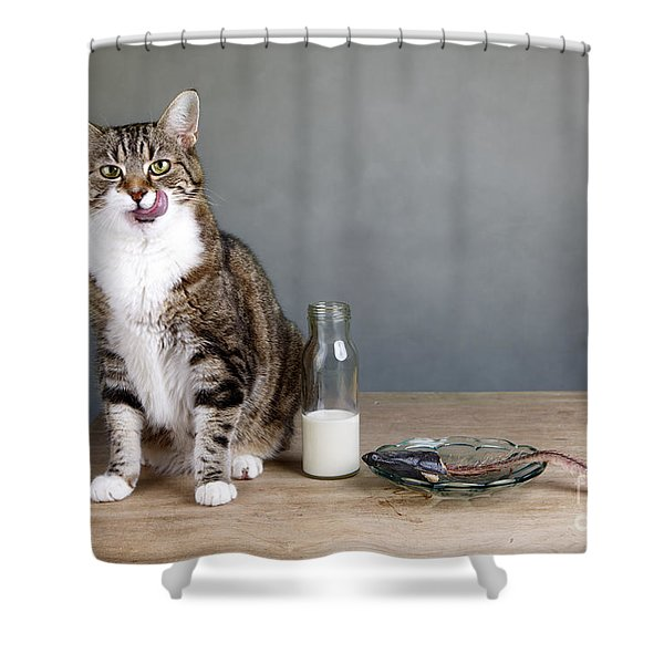Cat And Herring Shower Curtain