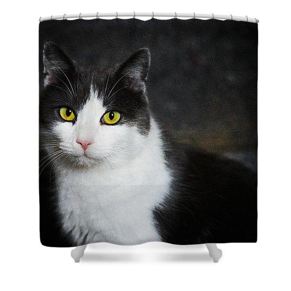 Cat Portrait With Texture Shower Curtain