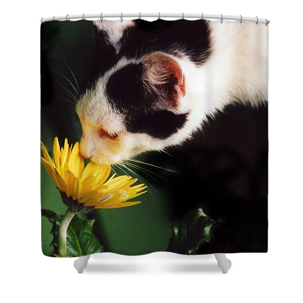 Cat Smelling Flower Shower Curtain