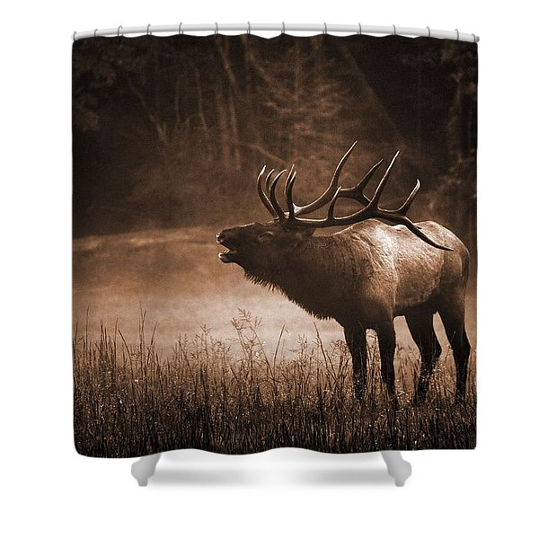 Cataloochee Bull Elk In Sepia Shower Curtain