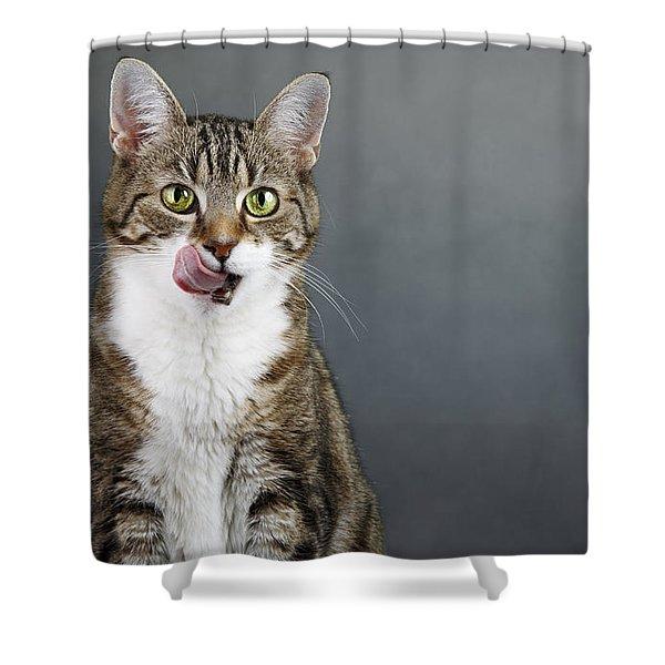 Catlick Shower Curtain