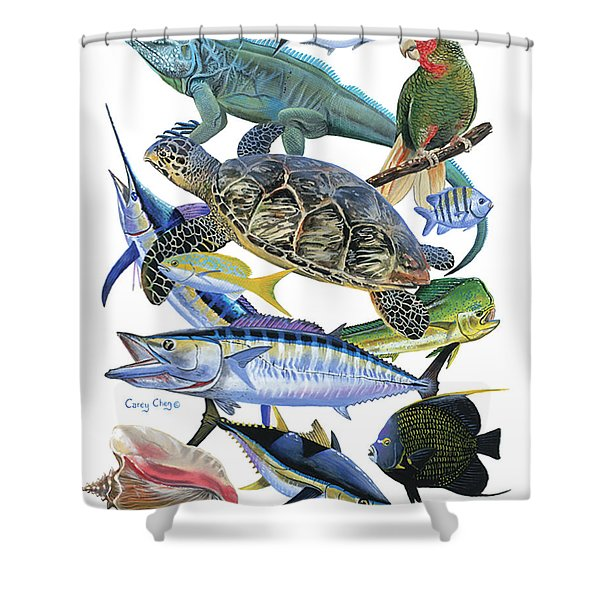 Cayman Collage Shower Curtain