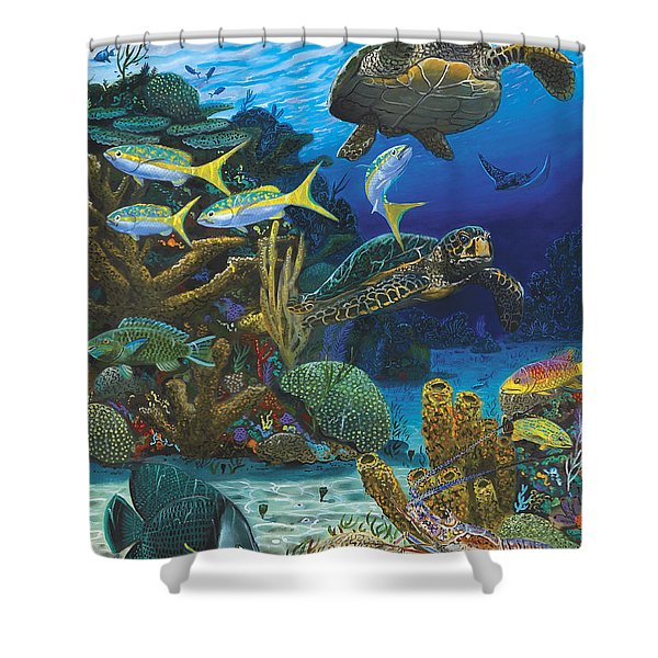 Cayman Turtles Re0010 Shower Curtain