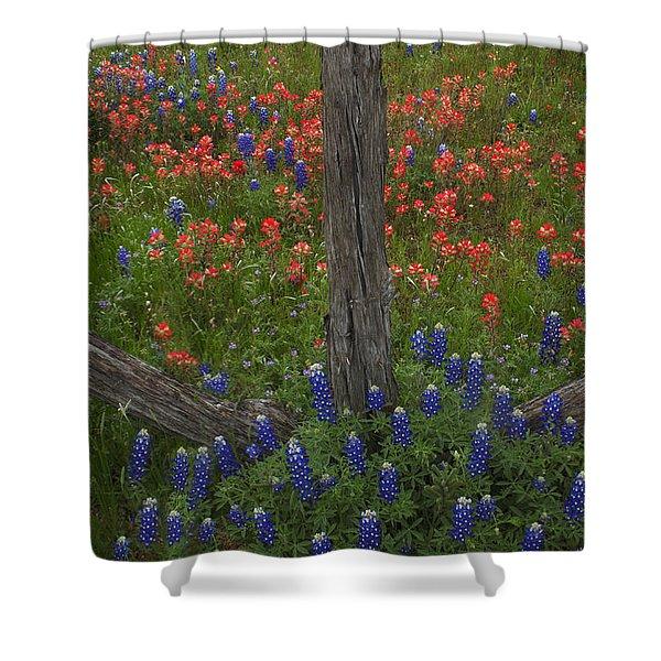 Cedar Fence In Llano Texas Shower Curtain