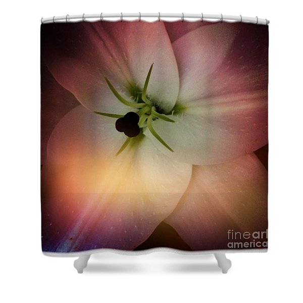 Center Shower Curtain