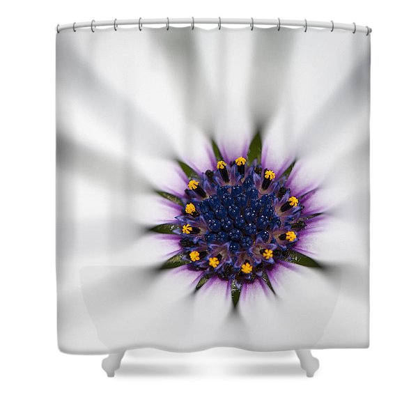 Center Of Life Shower Curtain