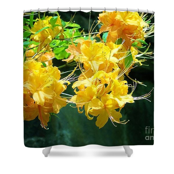 Centered Yellow Floral Shower Curtain