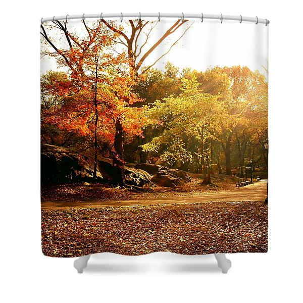 Central Park Autumn Trees In Sunlight Shower Curtain