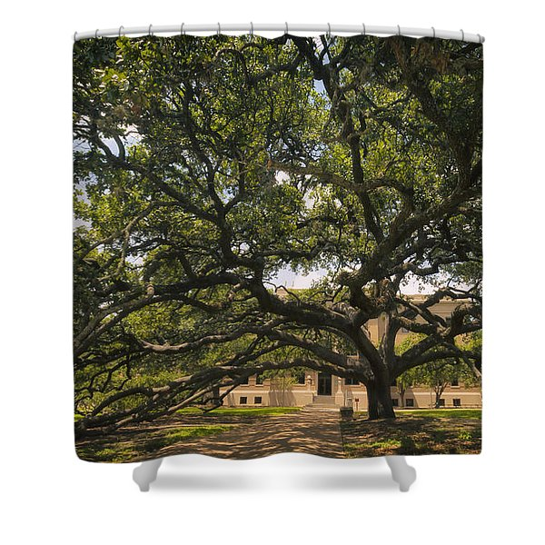 Century Tree Shower Curtain