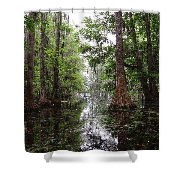Charleston Swamp Shower Curtain