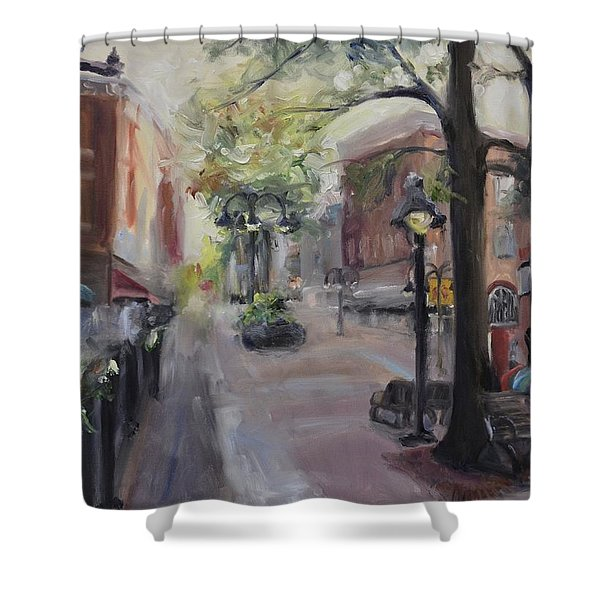 Charlottesville's Historic Downtown Mall Shower Curtain