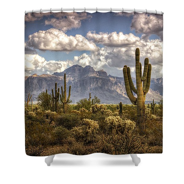 Chasing Clouds Two  Shower Curtain