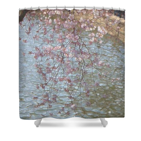 Cherry Blossoms P2 Shower Curtain