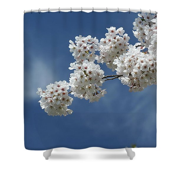 Cherry Tree Shower Curtain