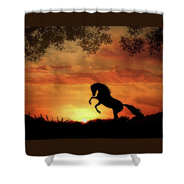Shower Curtain featuring the photograph Chestnut Sunset by Melinda Hughes-Berland