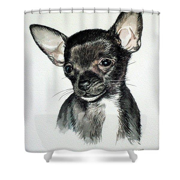 Chihuahua Black 2 Shower Curtain