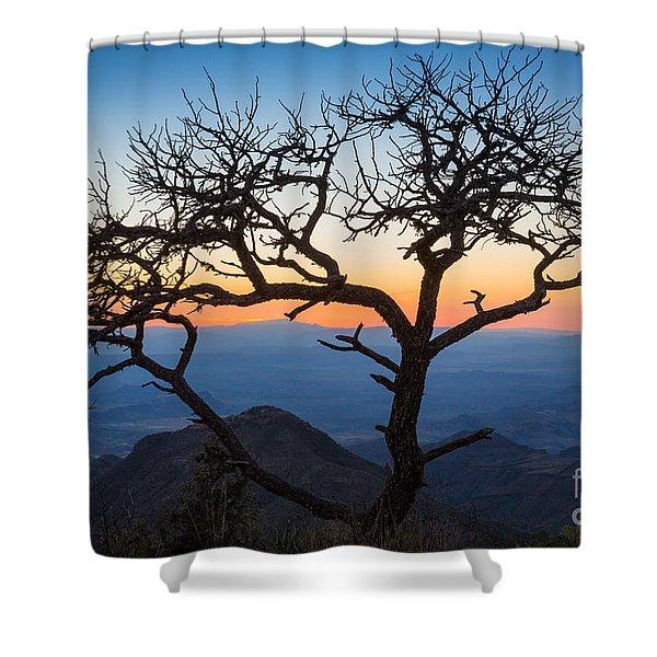 Chisos Tree Shower Curtain