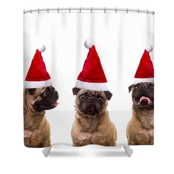 Christmas Caroling Dogs Shower Curtain