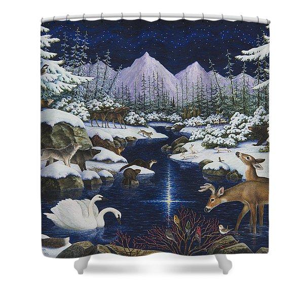 Christmas Wonder Shower Curtain