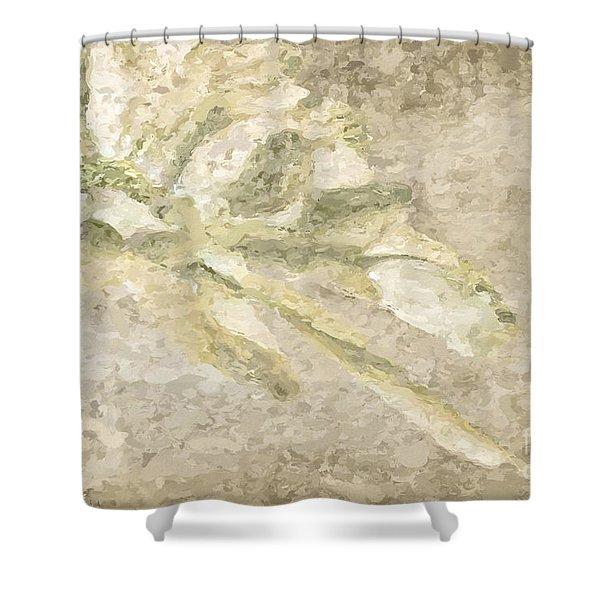 Chrysanthemum Abstract Shower Curtain