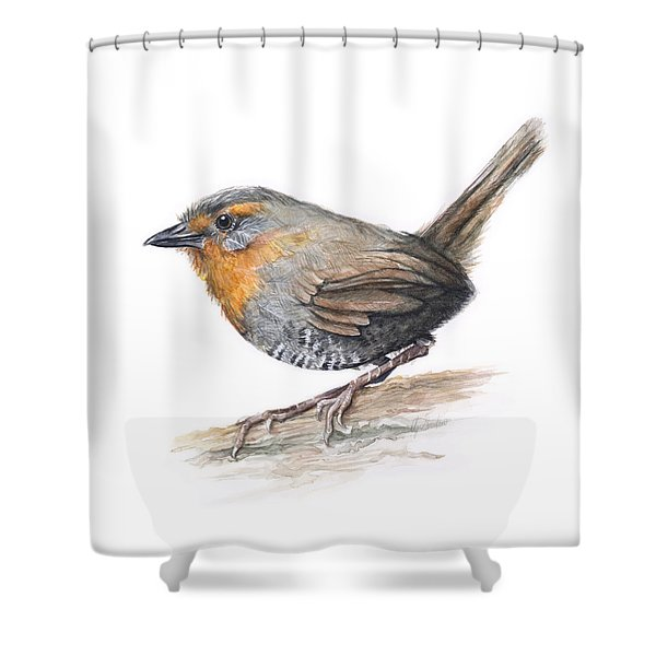 Chucao Tapaculo Watercolor Shower Curtain