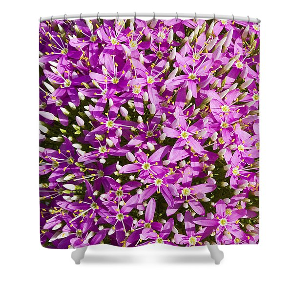 Centrifugal Mountain Pink Flowers Shower Curtain