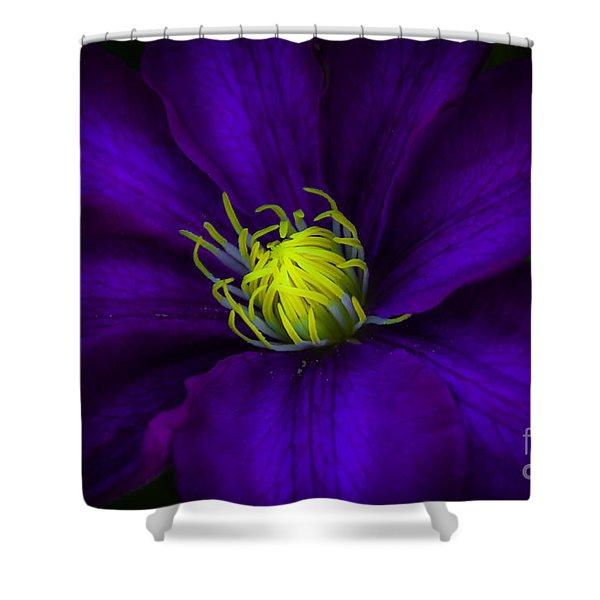 Clamatis Shower Curtain