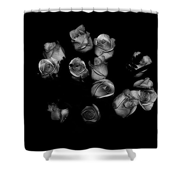 Classic Black Roses Shower Curtain