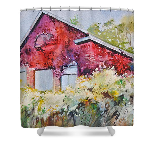 Cloak Of Colors Shower Curtain