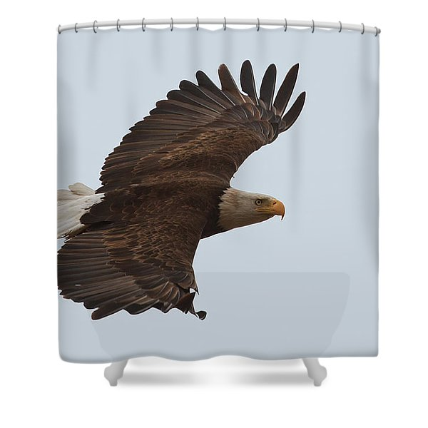 Close Encounter Of The Best Kind Shower Curtain