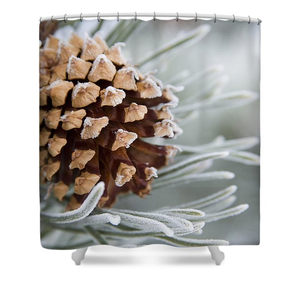 Close-up Image Of Frost-covered Pine Shower Curtain