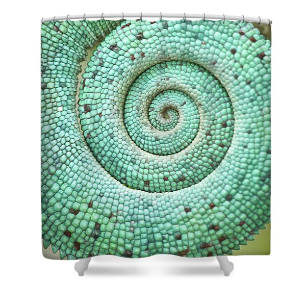 Close-up Of A The Coiled Tail Shower Curtain