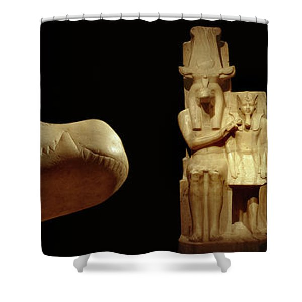 Close-up Of Calcite Statues Shower Curtain