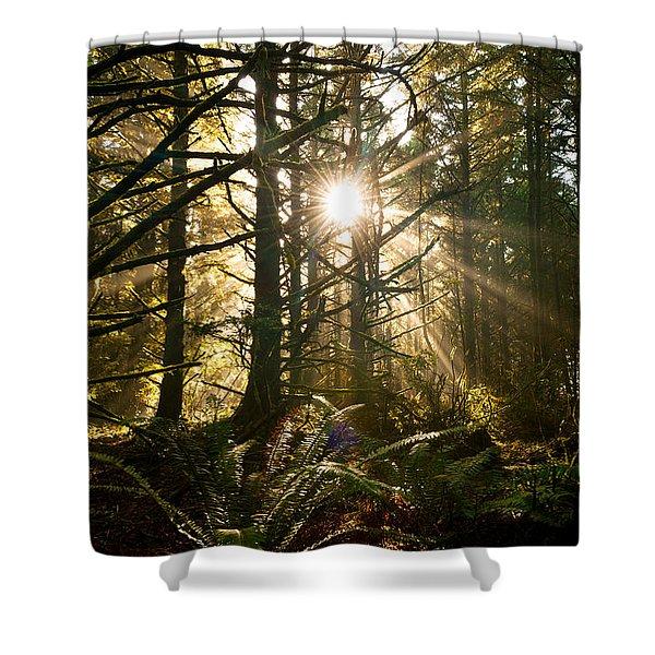 Coastal Forest Shower Curtain