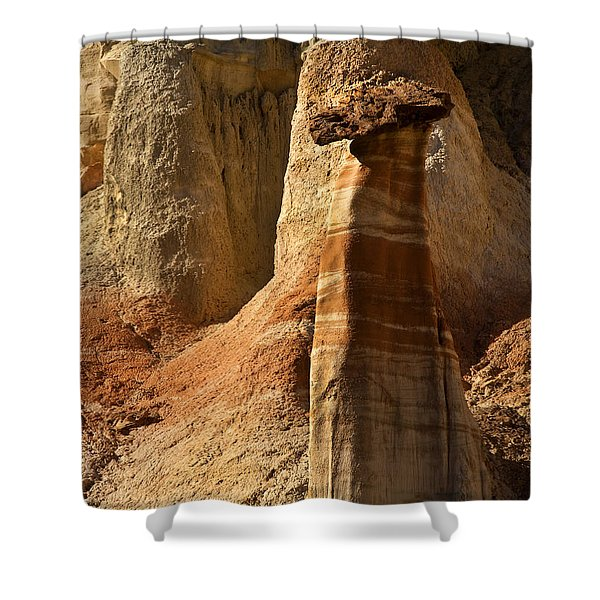 Cocky Hoodoo Shower Curtain