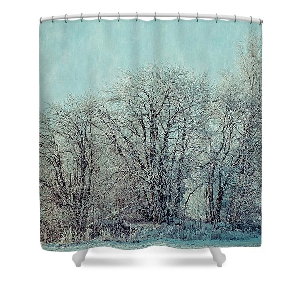 Cold Winter Day Shower Curtain