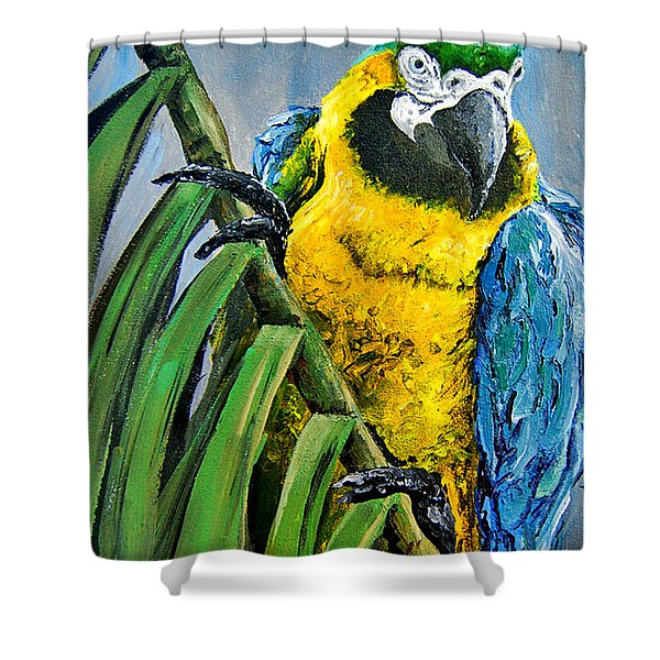 Colombian Amazon Macaw Shower Curtain