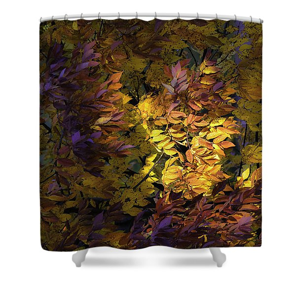 Color Calls Shower Curtain