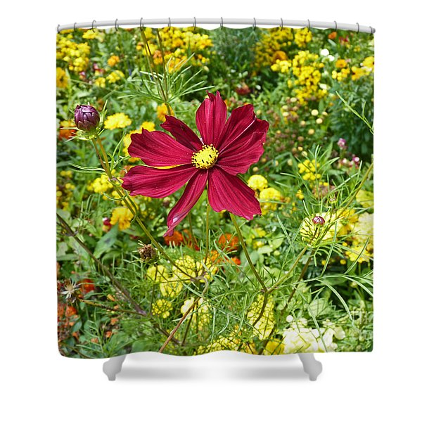 Colorful Flower Meadow With Great Red Blossom Shower Curtain