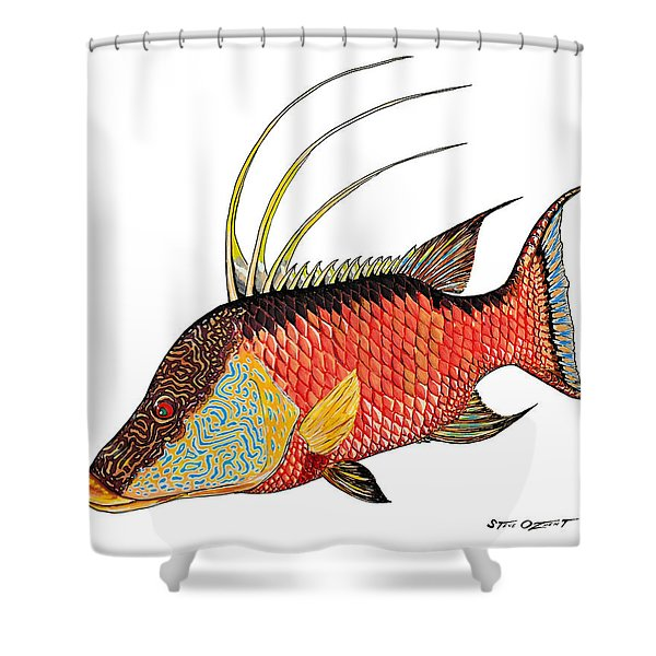 Colorful Hogfish Shower Curtain