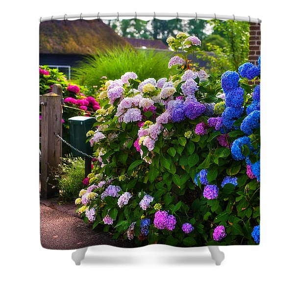 Colorful Hydrangea At The Gate. Giethoorn. Netherlands Shower Curtain