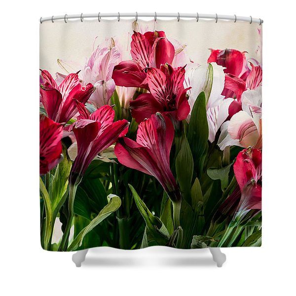 Colorful Peruvian Lillys Shower Curtain