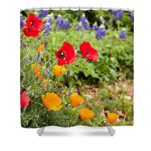 Colors Of Spring Shower Curtain