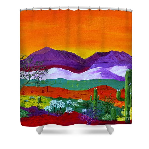 Colour Explosion Shower Curtain